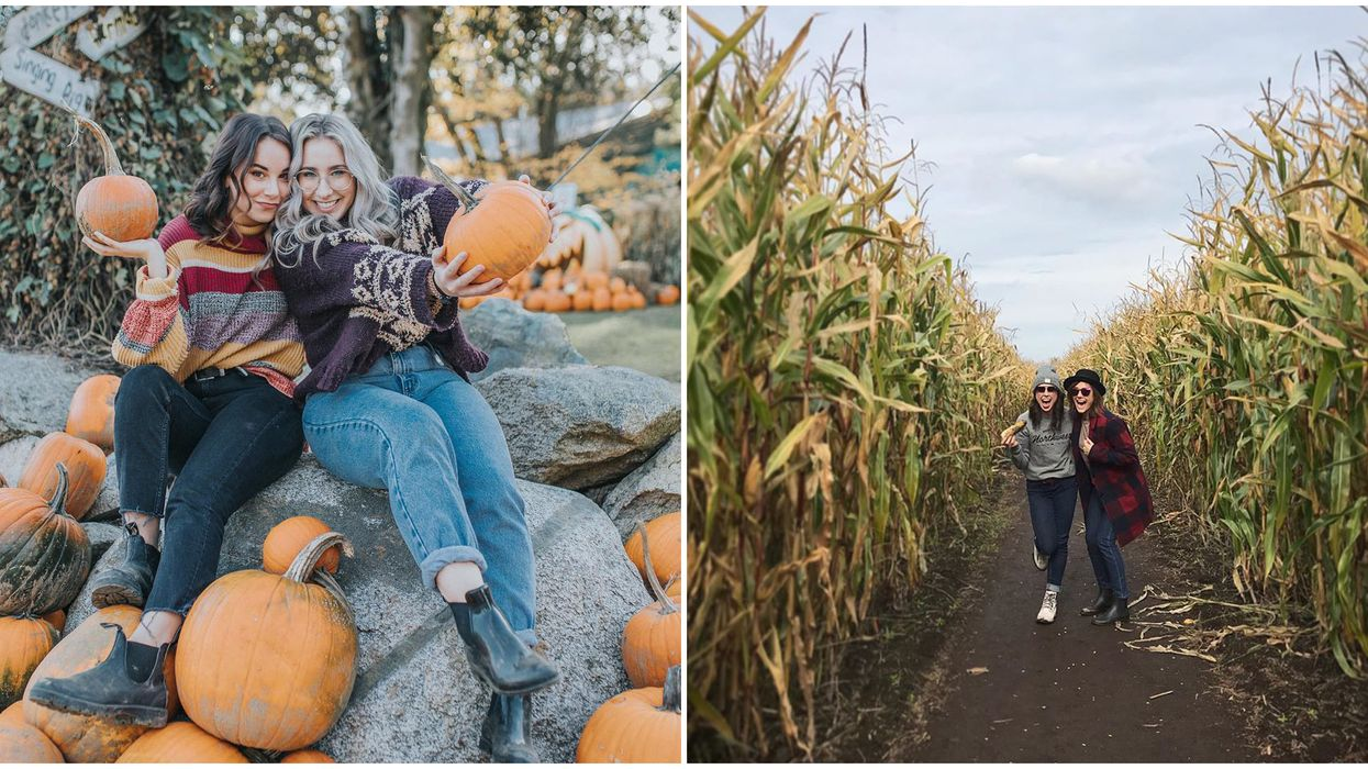 Fall Activities Near Vancouver That Are Less Than 2 Hours Away
