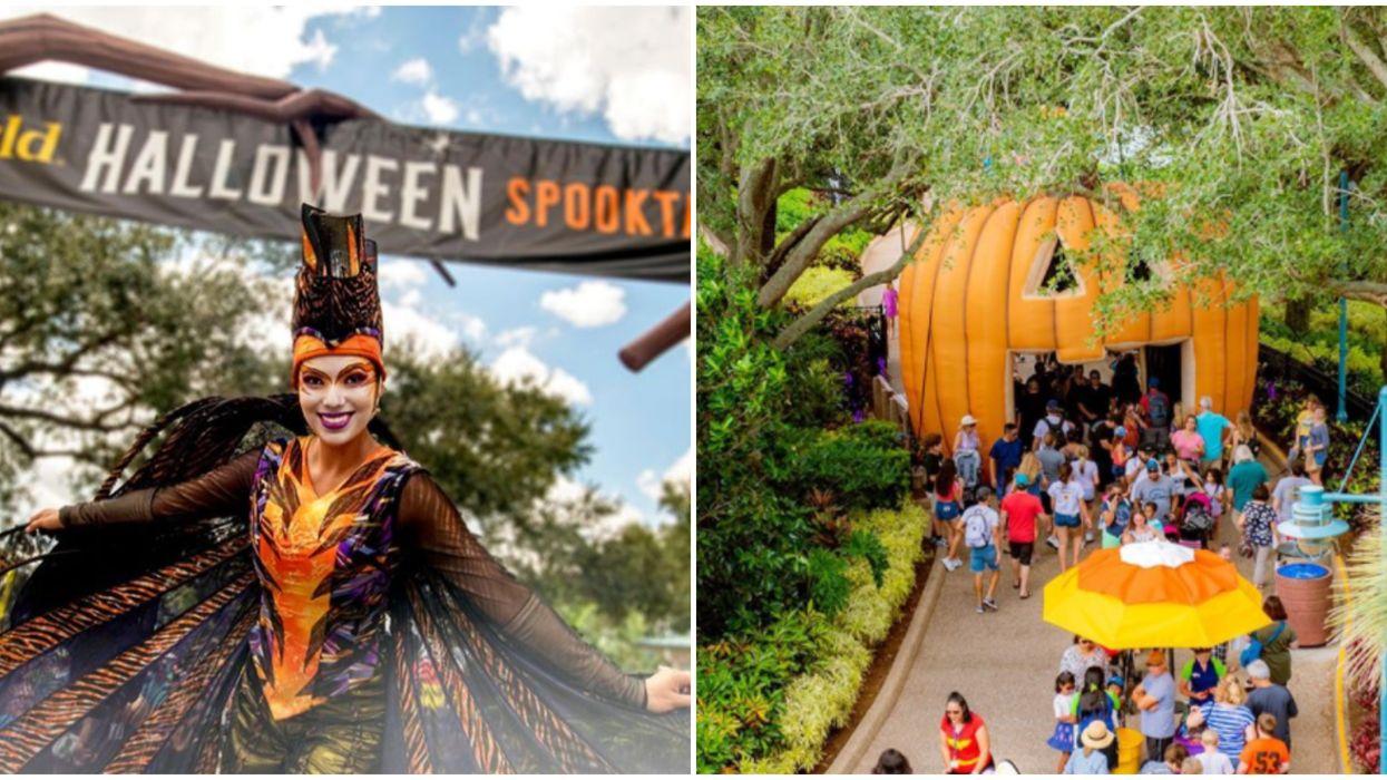 Halloween 2020 Is Officially A Go For SeaWorld Orlando