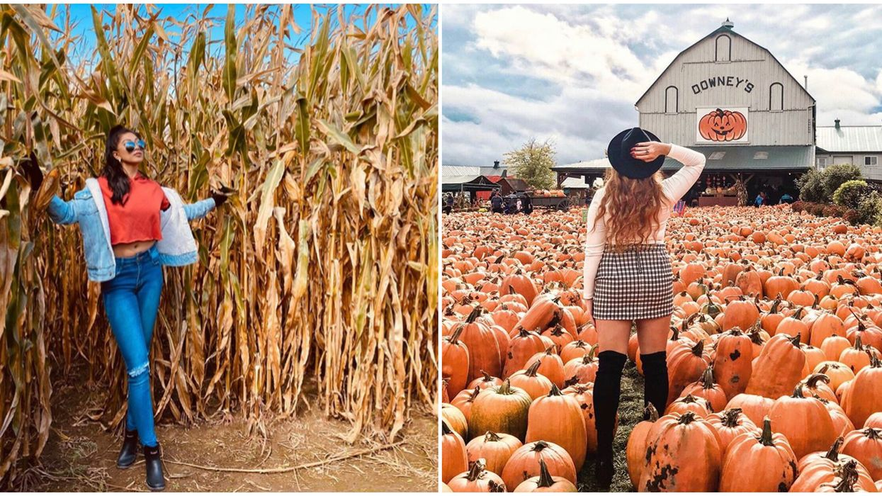 Ontario's Fall Activities You Need To Add To Your Bucket List