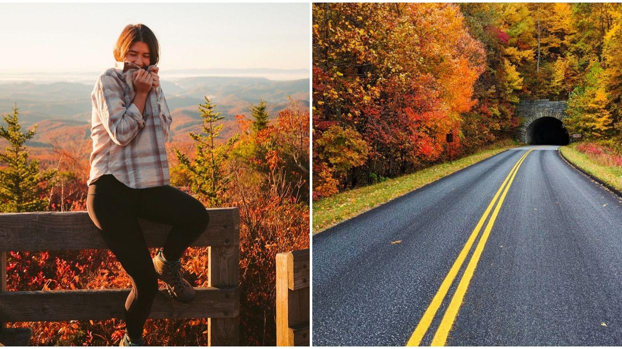 Fall In North Carolina Is Total Road Trip Goals