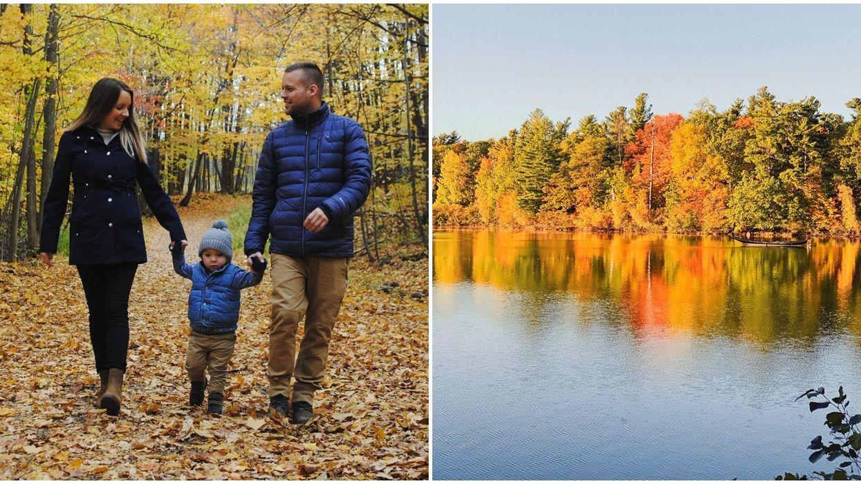 9 randonnées faciles près de Montréal qui te mèneront aux plus belles couleurs d'automne