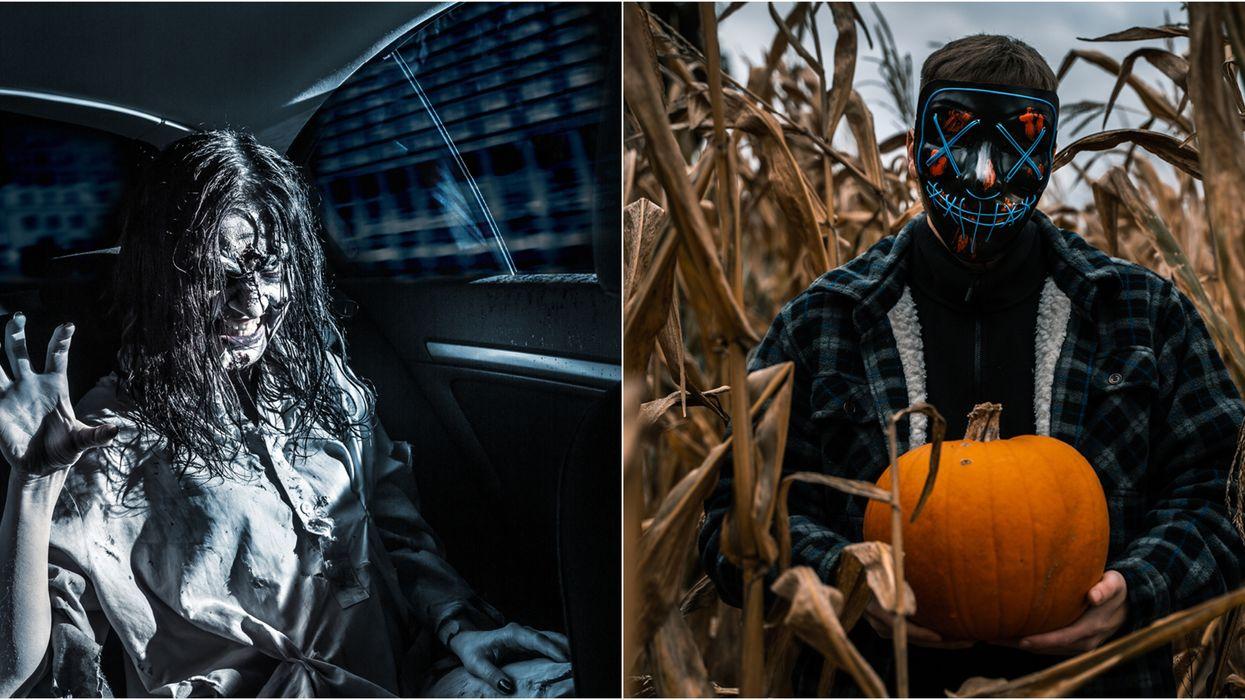 Les meilleures idées de choses à faire pour Halloween2021
