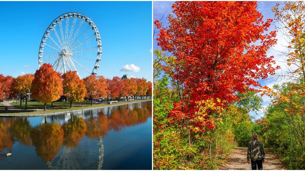 Voici comment profiter de l'automne au Québec même si tu ne peux pas voir tes amis