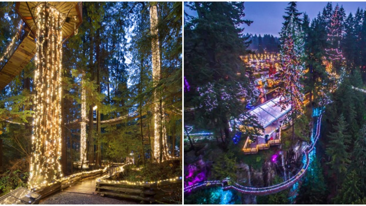 The World's Largest Christmas Trees Are In BC & They'll Be Twinkling From Top To Bottom