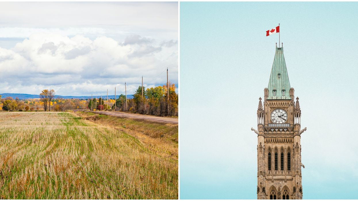 Canadian Grain Commission Jobs Pay Up To $65K & You Only Need A High School Diploma