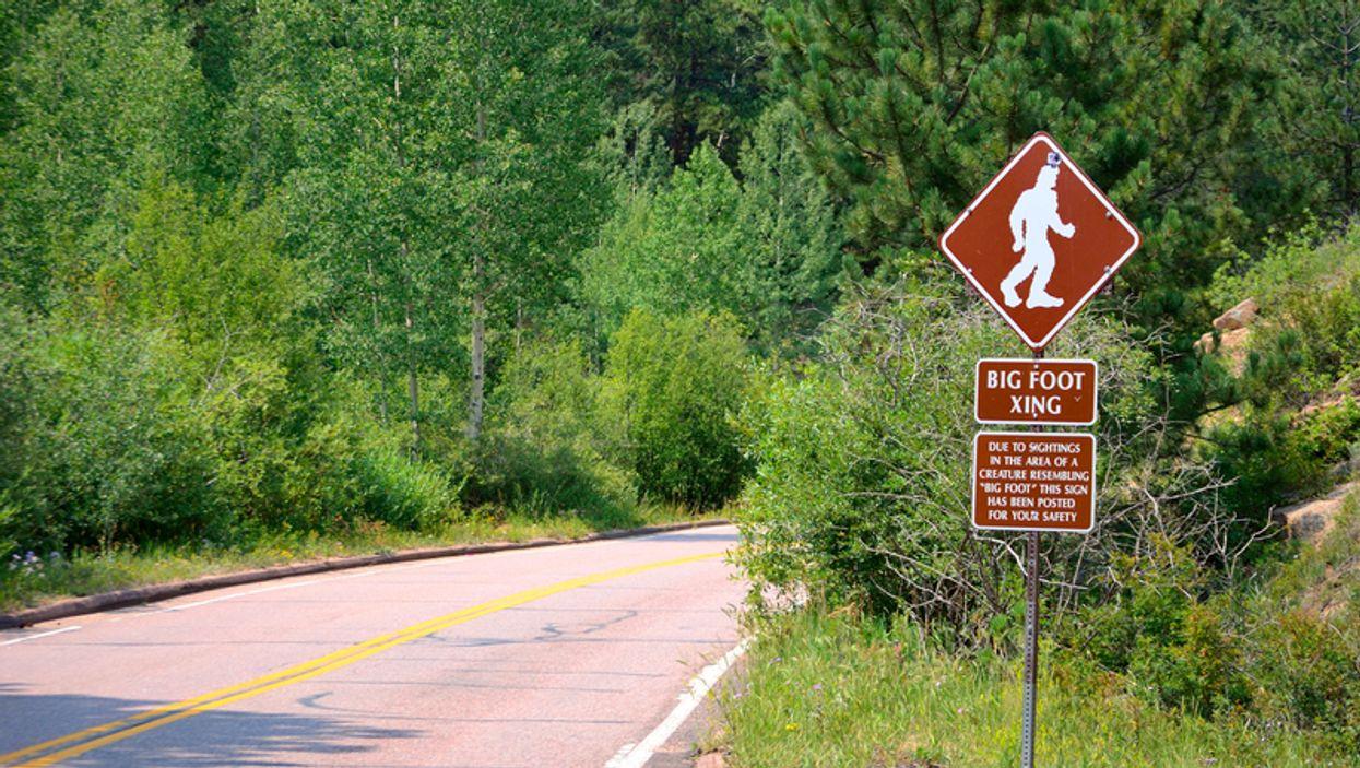 An Official Bigfoot Hunting Season May Soon Be Coming To Oklahoma