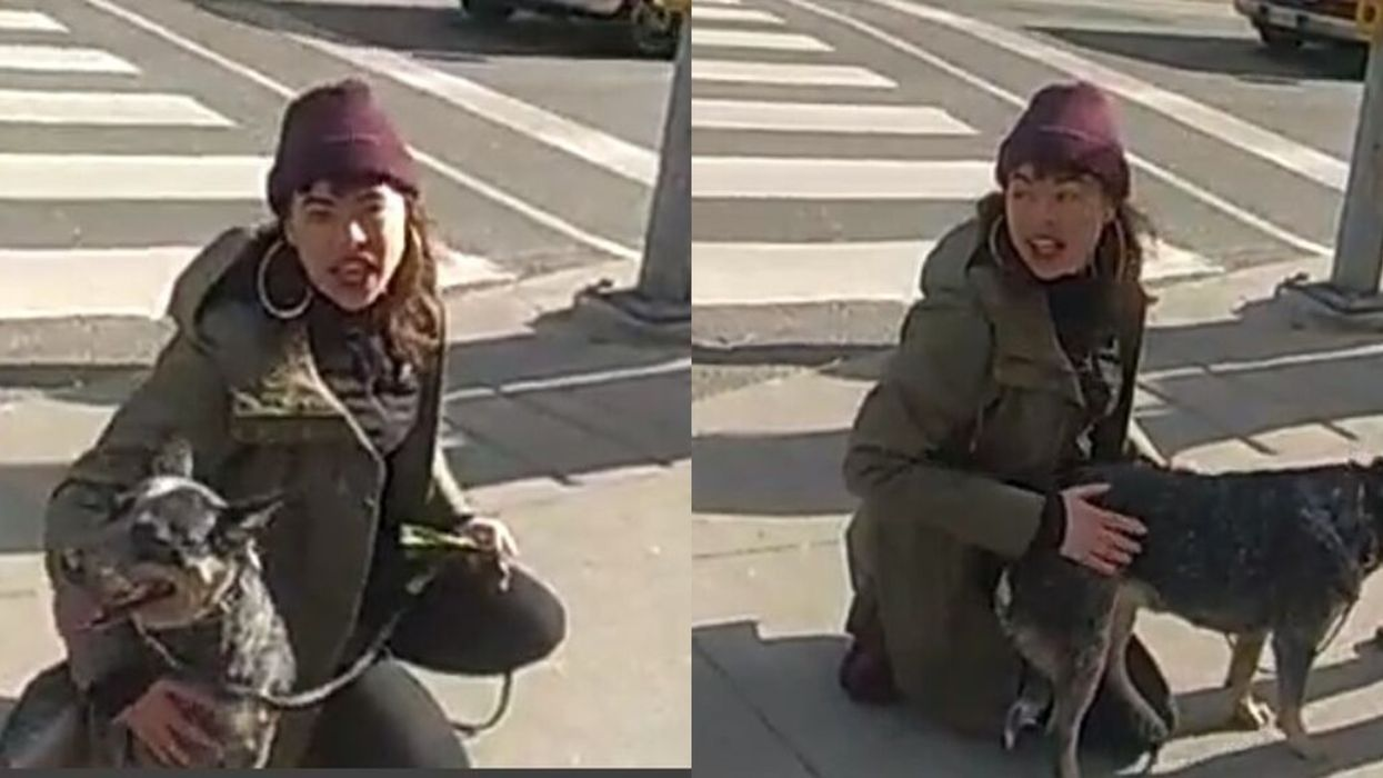 Toronto Police Are Looking For A Woman Accused Of Committing A 'Hate-Motivated' Assault Today