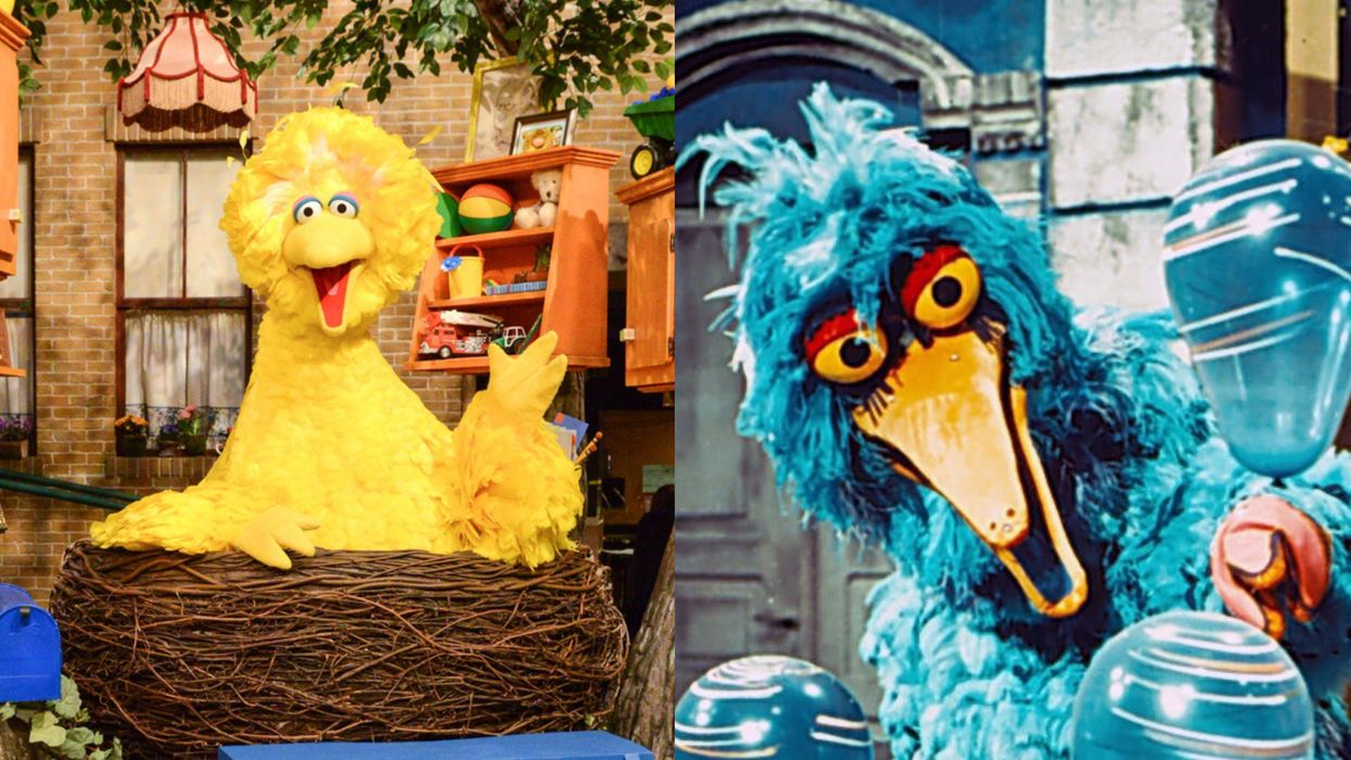 Big Bird Is Going Viral Because Of His Scary Cousin & It's A Nostalgic Nightmare (PHOTO)