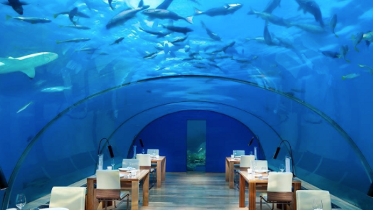 13 Insanely Cool Restaurants You Must Visit From Around The World