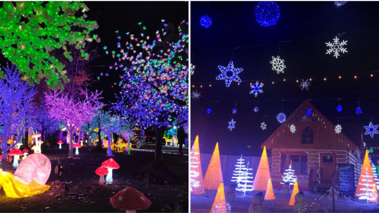 11 photos du nouveau parcours magique de 15 millions de lumières à Laval