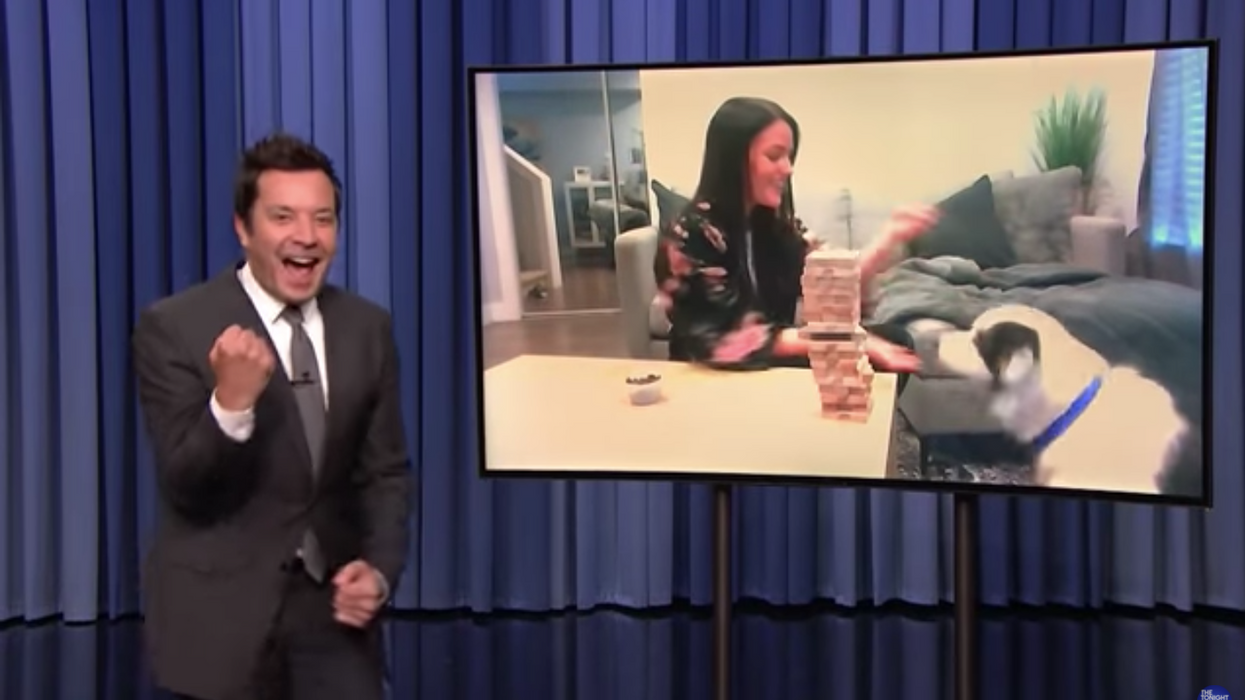 Jimmy Fallon Was Blown Away By This BC Pup's Secret Skill On 'The Tonight Show' (VIDEO)