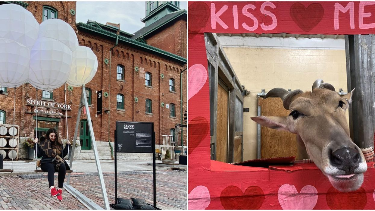 Last-Minute Valentine's Plans In Toronto That Are Super Special Dates