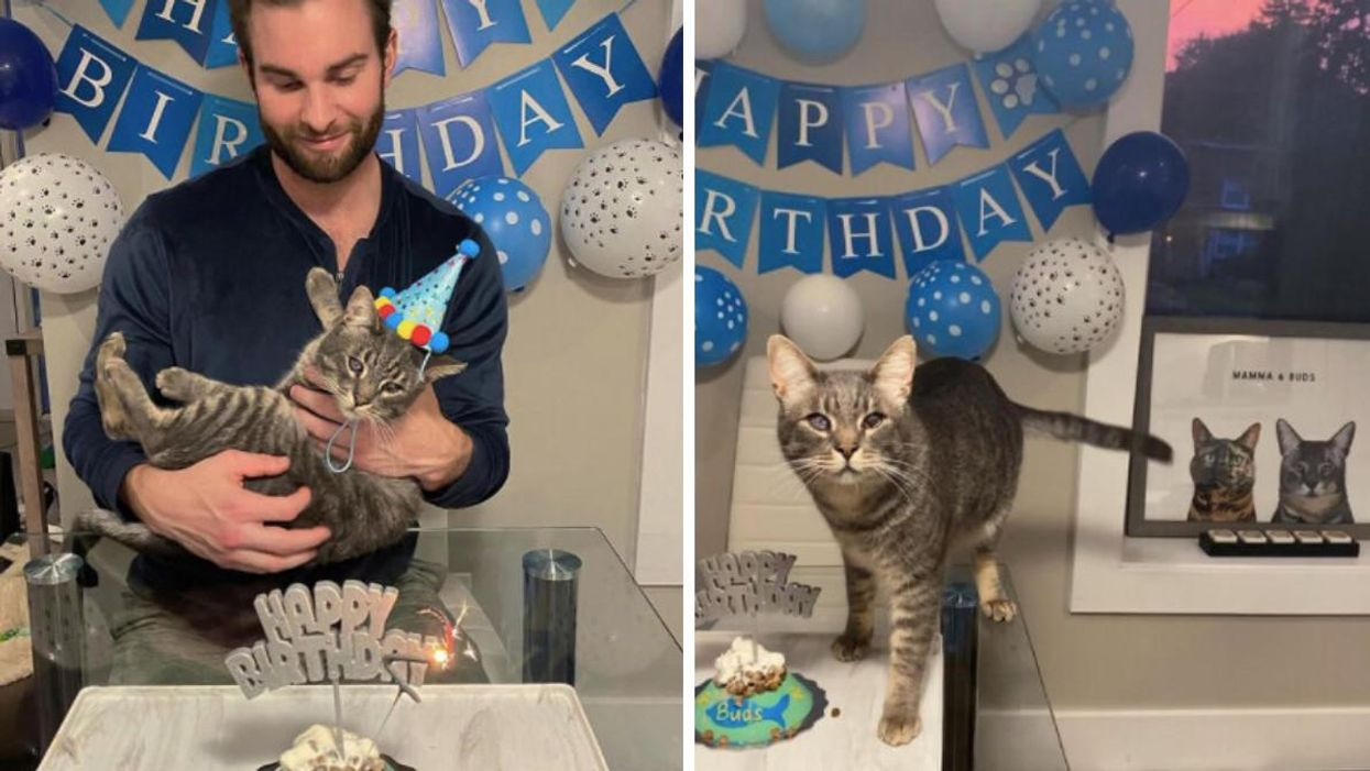 Maple Leaf Player Jack Campbell Threw A Birthday Party For His Cat & It's A Whole Vibe