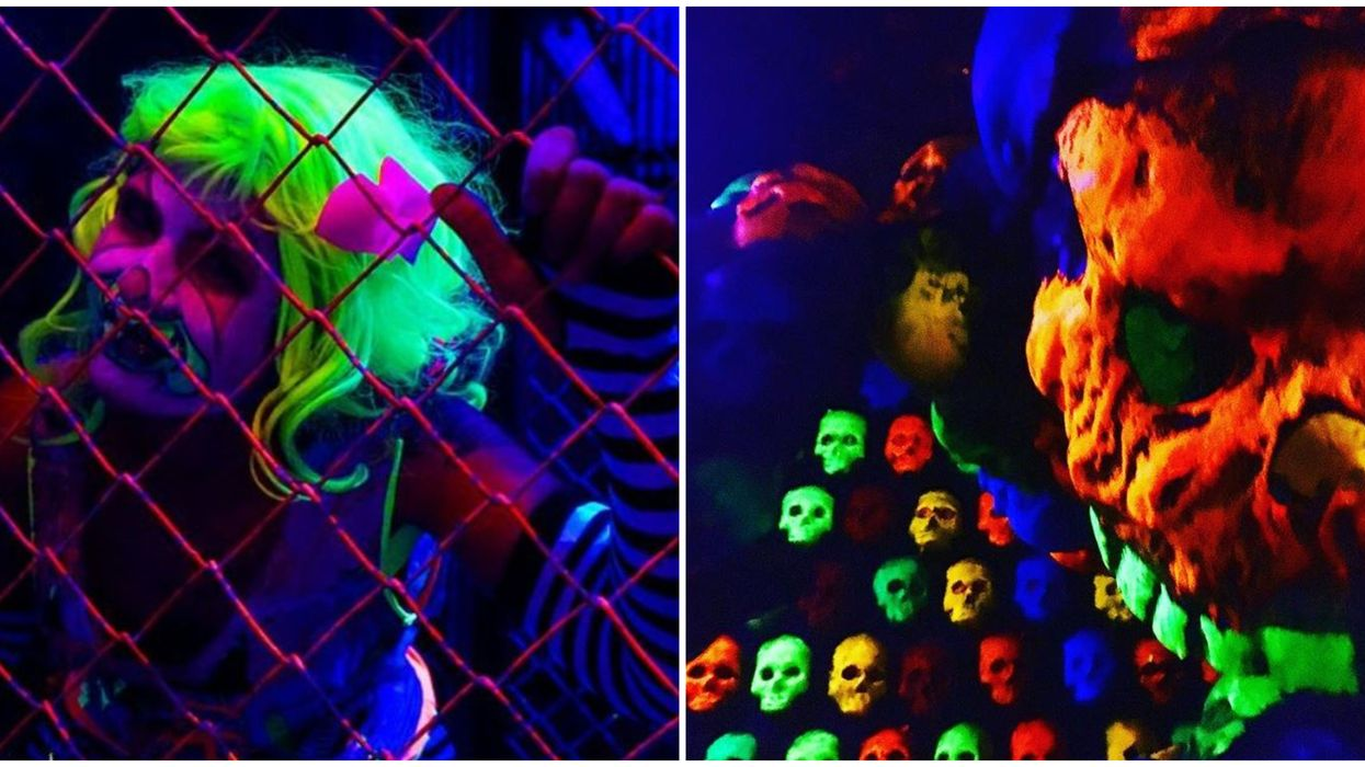 New Haunted House Attraction Tampa Scream-A-Geddon Teaser Is Seriously Spooky