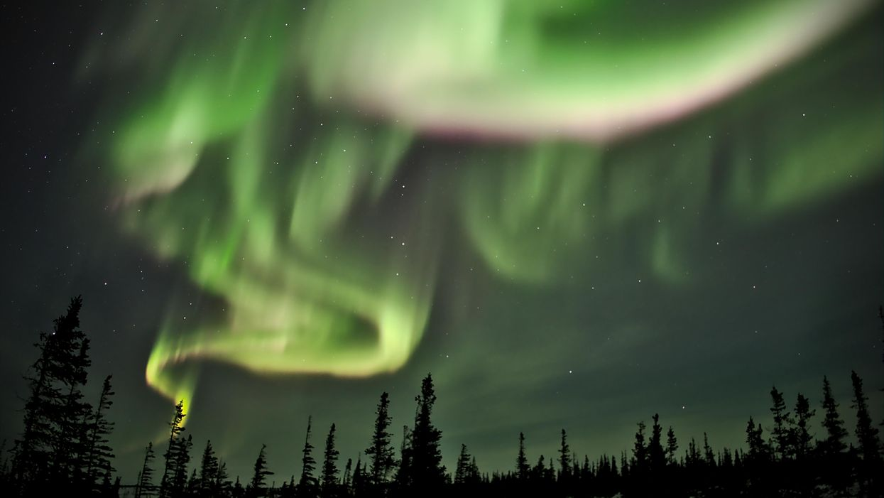 Northern Lights Live Cam Lets You Watch Them Over Canada From The Comfort Of Your Home