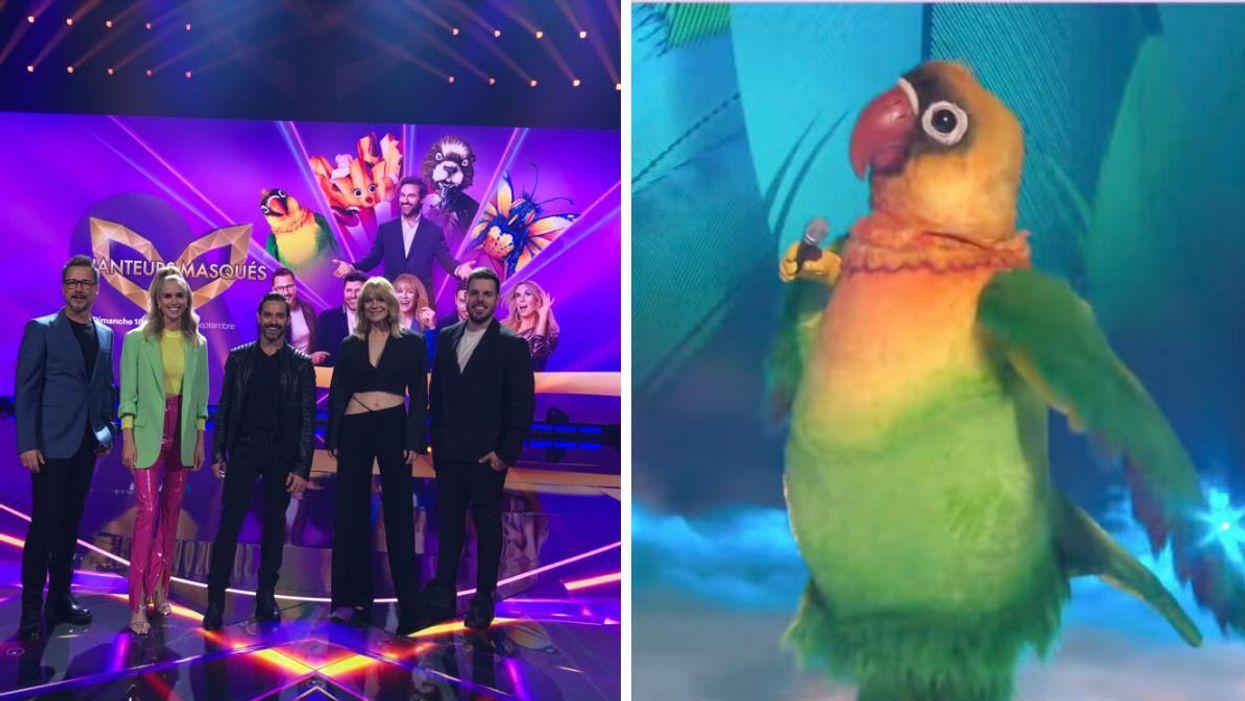 On a vu le premier épisode de «Chanteurs masqués» en primeur et voici à quoi t'attendre