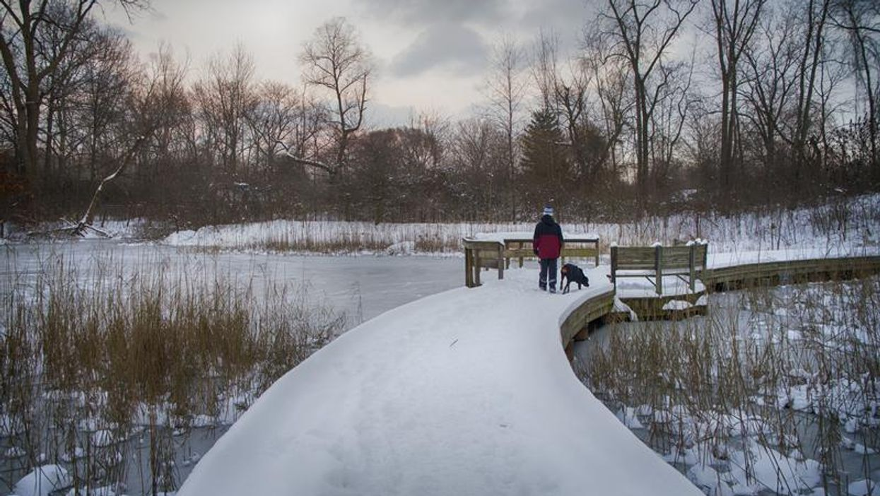 Parts Of Ontario Are Under Frost Advisories RN & It's About To Get Incredibly Chilly
