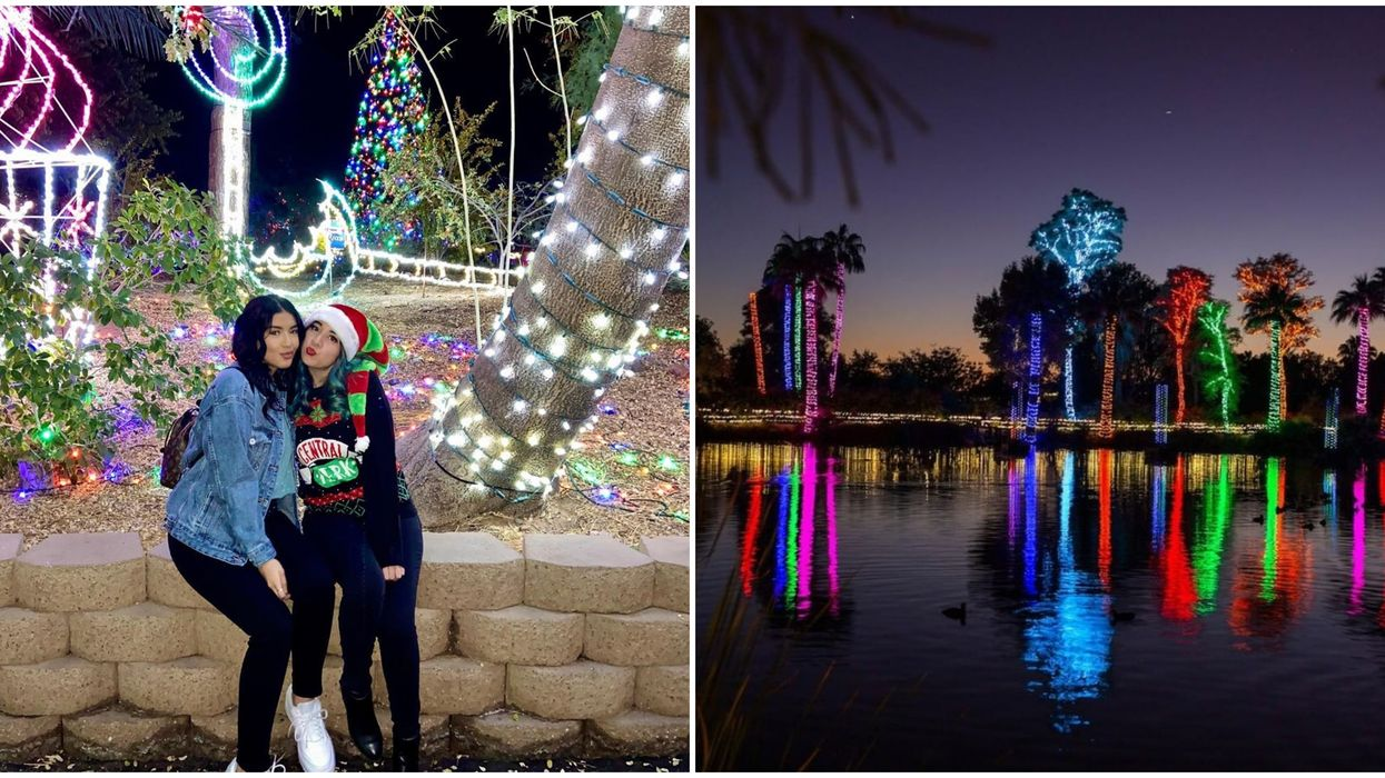 Phoenix Zoo's Zoolights 2020 Is Officially A Go For The Holidays