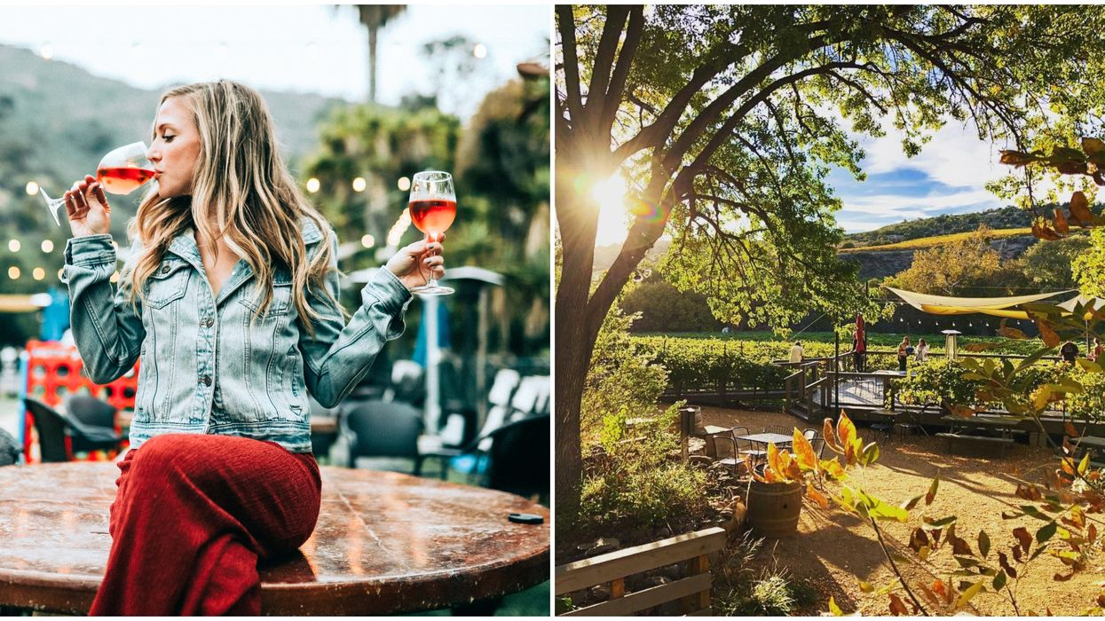 Sedona Vineyards Tours Groupon Will Take You To 4 Wineries For Cheap