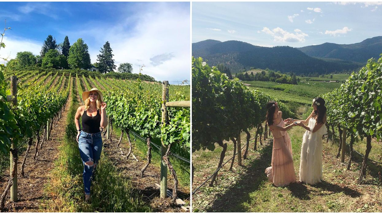 Summerland In B.C. Is Full Of The Best Hidden Wineries Ever