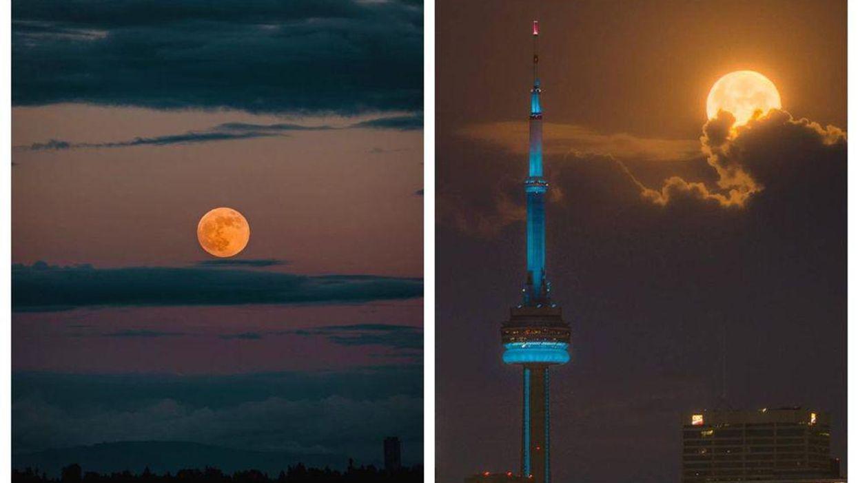The Super Flower Blood Moon Was Stunning Last Night (PHOTOS)