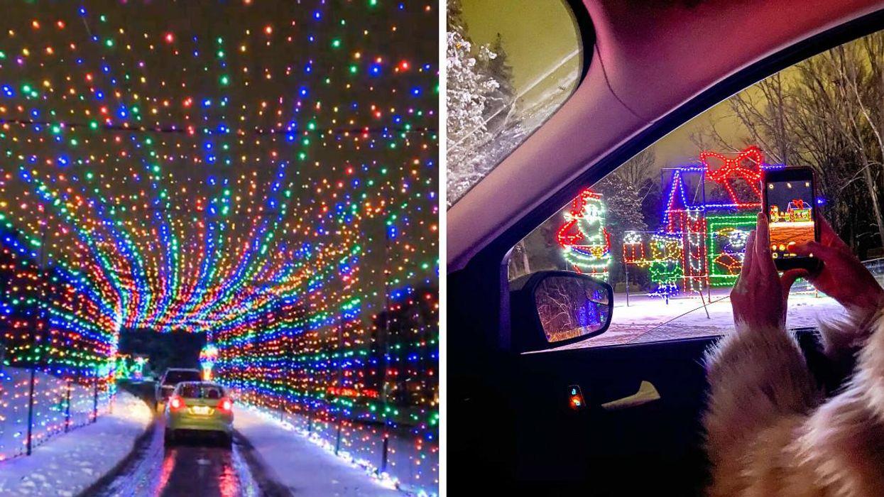 This Christmas Lights Trail Near Toronto Has 2 Twinkling Tunnels & Endless Magic (PHOTOS)