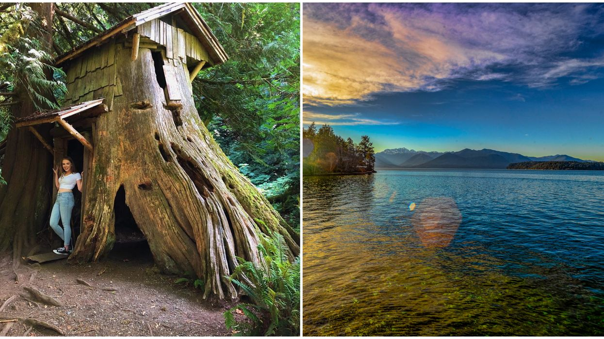 This Cool Washington Hike To Guillemot Cove Nature Reserve Will Take You To A Hobbit House
