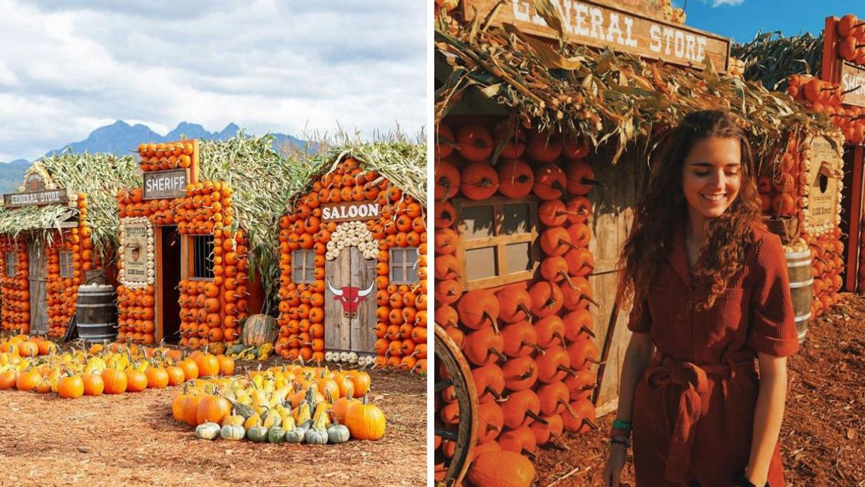 This Farm Near Vancouver Has Been Transformed Into A Pumpkin Town & It's A Fall Fairytale