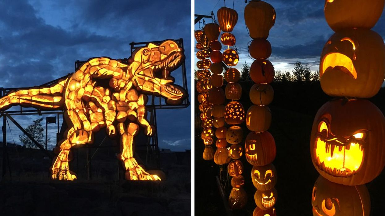 This Halloween Event In Ontario Will Have A Magical Trail Of Over 3,000 Glowing Pumpkins
