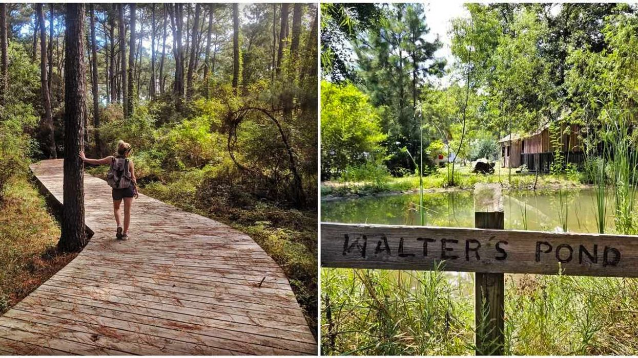 This Magical Houston Nature Preserve Is A Real-Life Fairy Tale