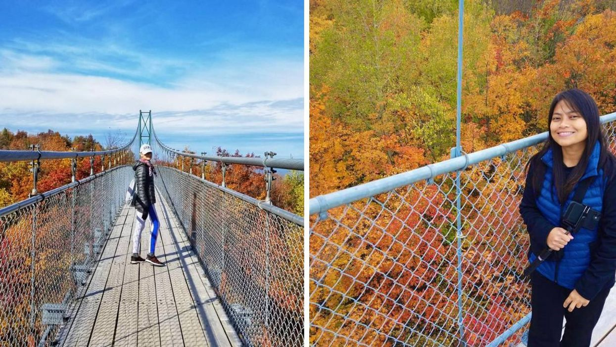 This Suspension Bridge In Ontario Will Let You Walk In The Sky Above The Autumn Leaves