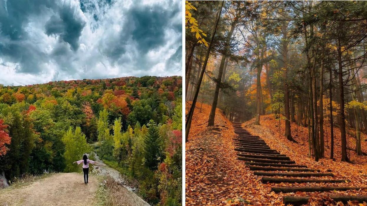 This Toronto Park Has Breathtaking Fall Views & A Trail Lined With Apple Trees