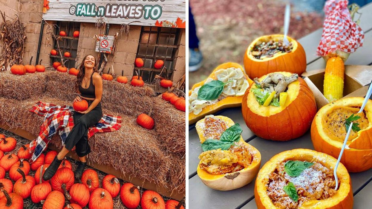 Toronto's Magical Fall Patio Is Returning & You Can Eat Autumn Treats Out Of A Pumpkin