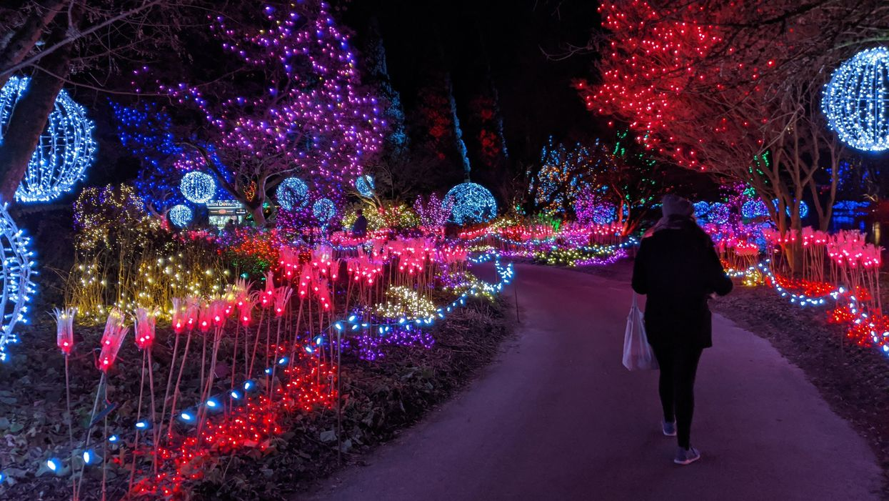 VanDusen's Light Festival With Over One Million Lights Opens Next Month In Vancouver